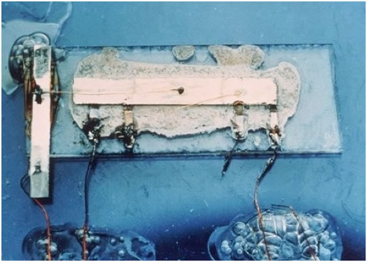 Integrated Circuit Graphic 42K Wiki.jpg